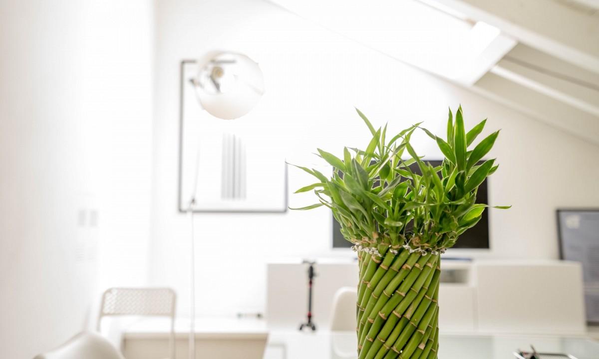 Daglicht Je Keuken : Mijn 7 tips voor meer daglicht in huis leukegeit