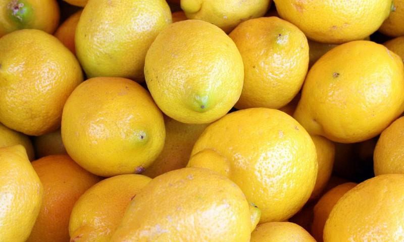 Het Seizoensfruit van Februari