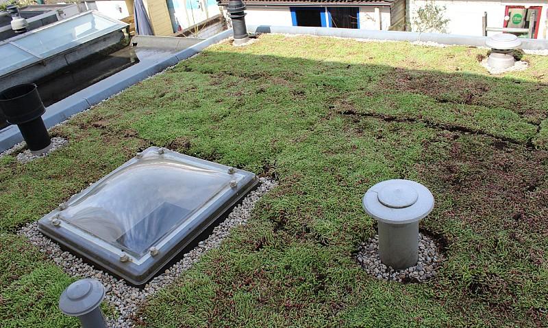 Image result for groen dak uitbouw