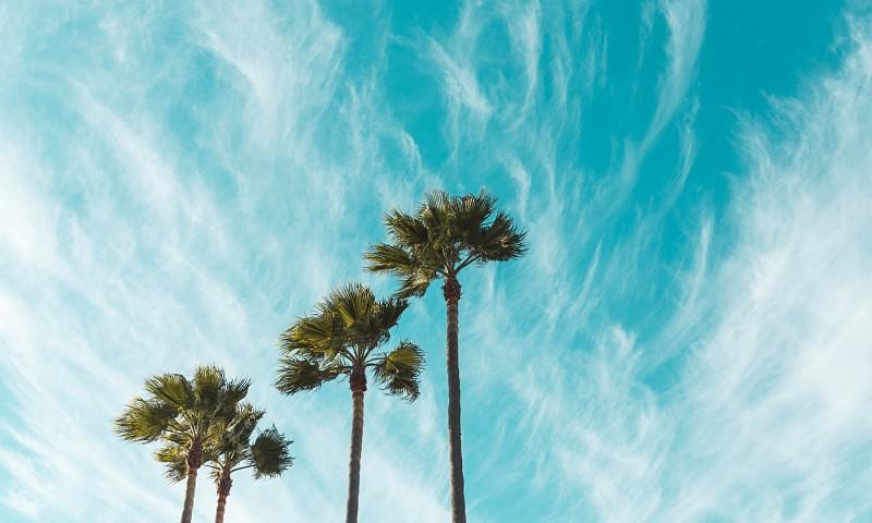 Een koel huis zonder airco – 5 verfrissende tips