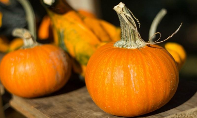 De seizoensgroenten van oktober