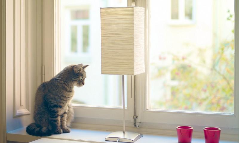 To do lijst huishoudelijke taken – weg met die blinde vlek