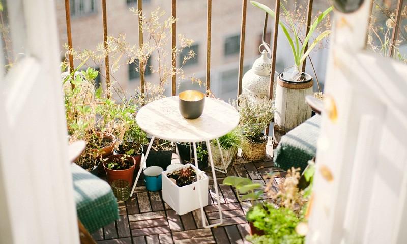 Dit zijn de tuin- en balkontrends voor deze zomer