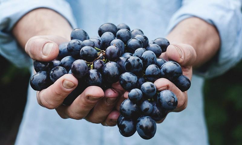 27 gezonde snacks & tussendoortjes – lekker en snel te maken