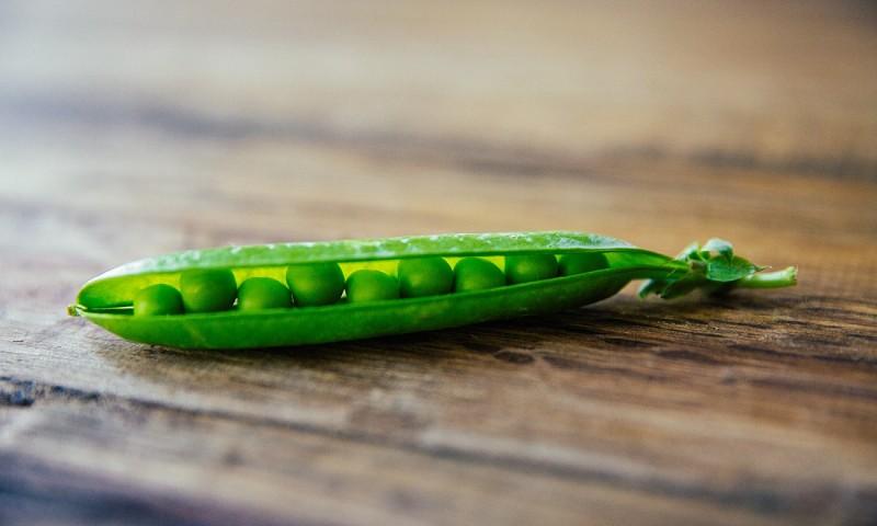 Hoe krijg je genoeg plantaardige eiwitten binnen – en hoe zit dit bij mij?