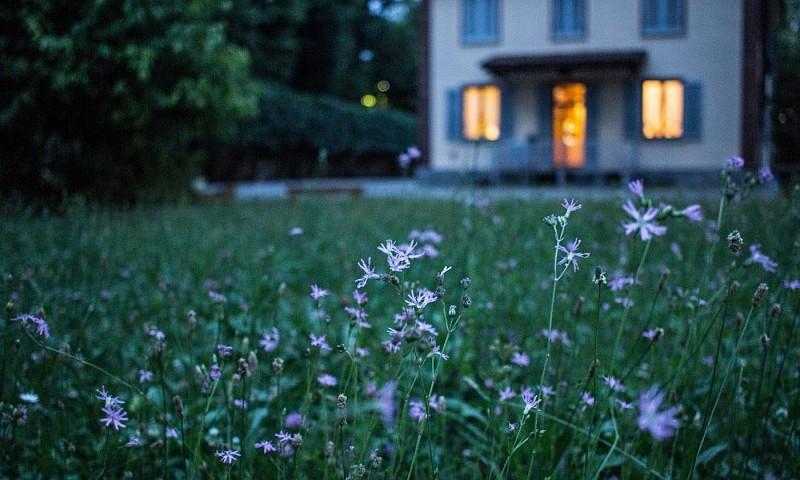 Zo maak je van je tuin een waar paradijs
