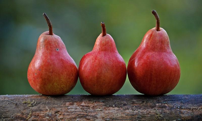 Groene tip #5 – 4 manieren hoe ik voedselverspilling voorkom