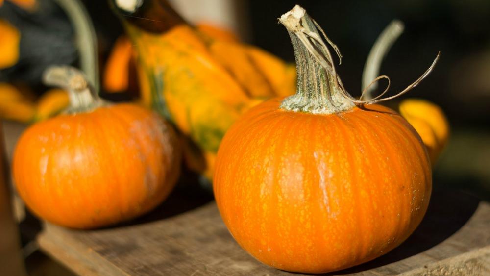 Geliefde Seizoensgroenten oktober - verse groenten het hele jaar door @SJ17