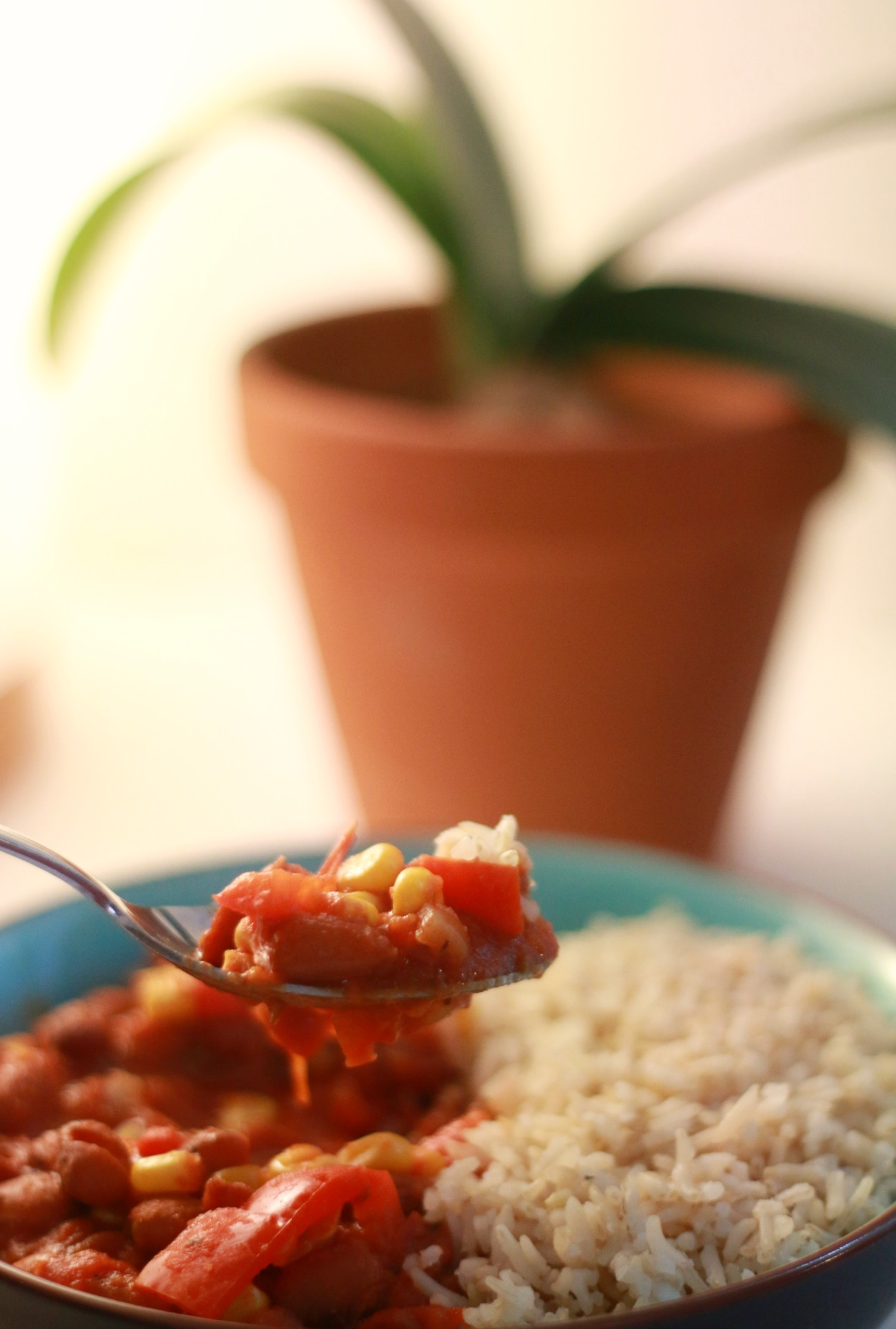 chili sin carne recept