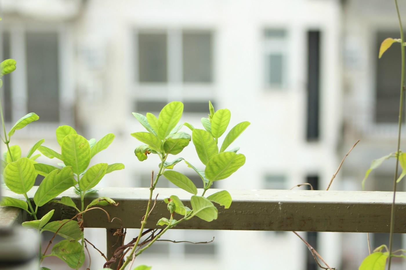 Klein huis inrichten deze tips gaan je helpen for Huis in richten