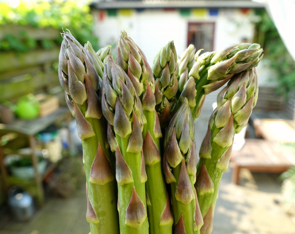 risotto recept met groene asperges en geitenkaas