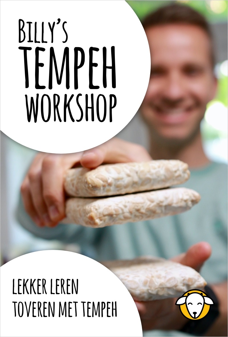 tempeh bereiden workshop