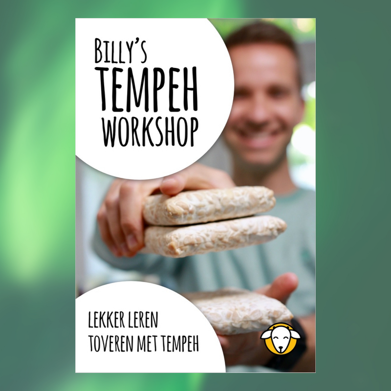 online tempeh workshop
