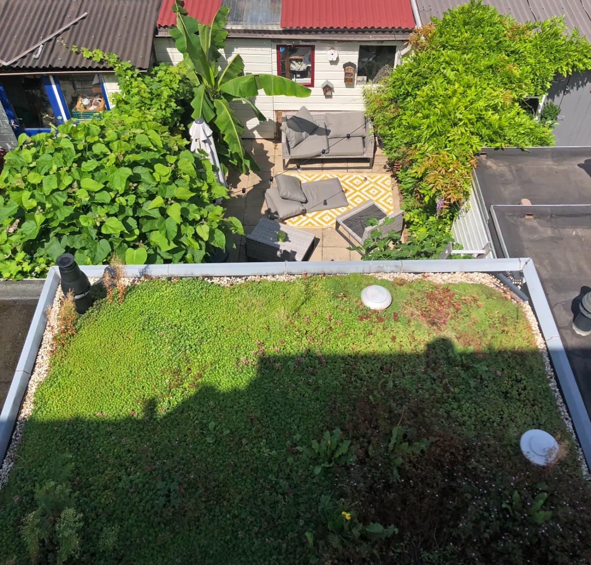 onze tuin in Delft